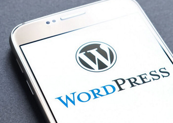 Wordpress for Beginners the Ultimate Step-By-Step Blueprint ACCREDITED BY CPD