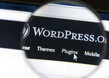 WordPress: Build Your Online Business ACCREDITED BY CPD